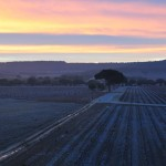 Sunrise at LeDomaine, near Valladolid, Spain
