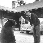 Vintage Photo Series – Bing with a …. bear?