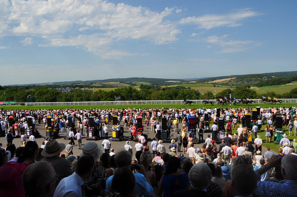 Glorious Goodwood by Sue Lowry