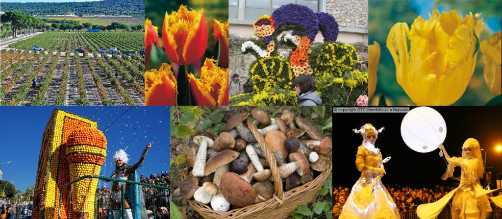 From Flowers to Food & Drink Festivals