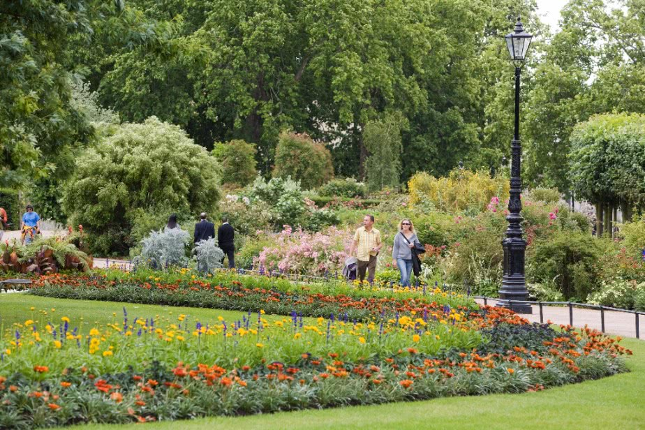 Park Life - Hyde Park Rose Garden by Phil Russell